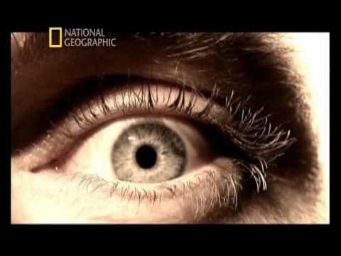Akıbetimiz Güneş Sönünce National Geographic Türkçe