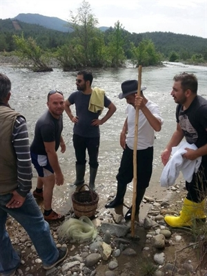 Yılmaz Erdoğan, Köyceğiz e Yerleşiyor